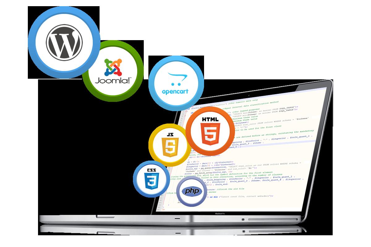 ChooseBSG Website Design