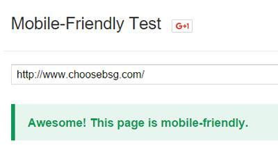 Mobile Friendly Test Success